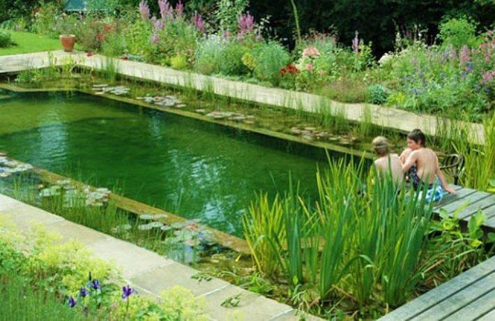hình ảnh bể bơi thiên nhiên